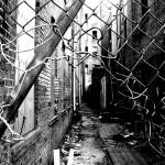 """Alley shot Gold Street/ Middle Street Bridgeport ,"" by 826paranormal"