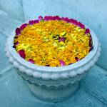 """""""Hindu Flower Offering"""" by CrypticFragments"""