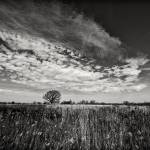 """Big Sky over the Northern Prairie"" by keithdotson"