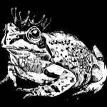 """""""Frog Prince"""" by Leenasart"""