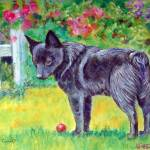 """""""Schipperke Dog, The Red Ball"""" by wally_doodle"""