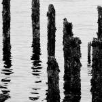 """""""Decaying Pier"""" by IanGill"""