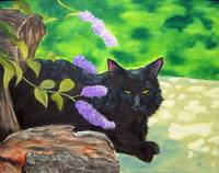 Black Cat Under the Butterfly Bush