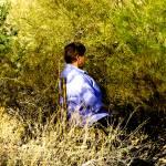 """Wild Contemplation"" by GMurnane12"