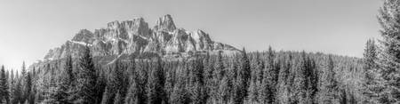 Castle Mountain Panorama