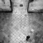 """solitude"" by 13"