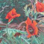 """Three Poppies"" by AbbieGroves"