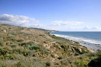 Crystal Cove-42