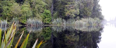Lake Matherson Reflections