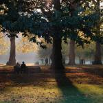 """""""Green Park"""" by ejpphoto"""