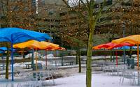 Umbrellas and Snow