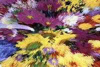 abstract_flowers_c2007_silva