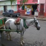 """""""Masaya, Nicaragua"""" by scottkwimer"""