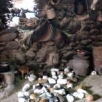 """""""Guinea Pigs en la cocina"""" by scottkwimer"""