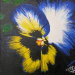 """Bit of a Pansy"" by Oggy"