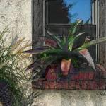 """Window Box"" by GordonBeck"