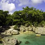 """Haiti, Caribbean cove"" by tropicalpix"