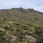 """Mount Kosciuszko"" by Colin_Ewington"