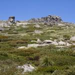 """Mount Kosciuszko Walk"" by Colin_Ewington"
