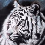 """white tiger"" by giftportraits"