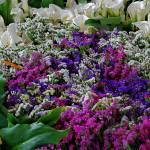 """""""mercato di fiori"""" by azzurrointenso"""