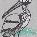 """""""Pelican"""" by Polylerus"""