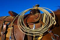 Rodeo Western Roping Saddle