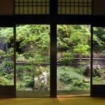 """japanese garden"" by AlexCarbune"