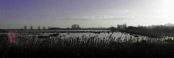Wicken Fen, clear blue