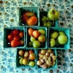 """Garden Goodness"" by emburke"