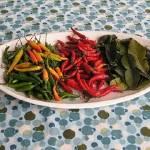 """""""Peppers & Kaffir Lime Leaf"""" by emburke"""
