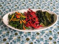 Peppers & Kaffir Lime Leaf