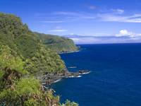 Along the road to Hana