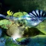 """""""As the Crow Flies"""" by KameraKat"""
