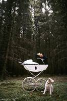 White dog in the woods with baby carriage