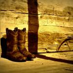 """Log Cabin Boots"" by photographicleigh"