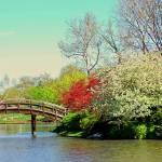 """Japanese Garden I"" by RamonFernandez"