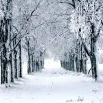 """""""Snowy Laneway"""" by Artmyth"""