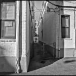 """Courtyard in Brooklyn"" by madeline"