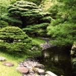 """""""Hidden Path"""" by strangerealities"""