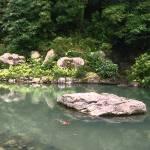 """Koi Pond"" by strangerealities"