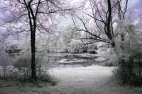 Infrared Serenity