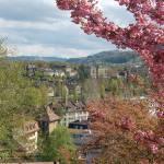 """Bern, Switzerland - Fall Colors"" by phillipc81"