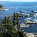 """Middle Cove, Cape Arago"" by garlickn"