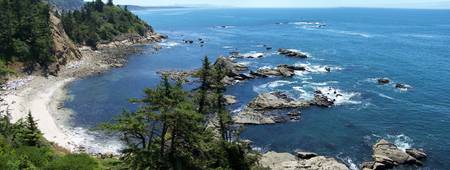 Middle Cove, Cape Arago