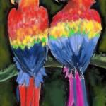 """""""Parrots"""" by FunGraphix"""