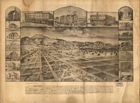 1886 San Jacinto, CA Bird's Eye View Panoramic Map