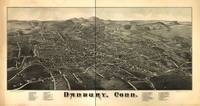 1880's Danbury, CT Bird's Eye View Panoramic Map
