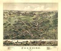 1882 Cheshire, CT Bird's Eye View Panoramic Map