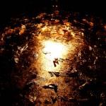 """Gold foil"" by jocopix"